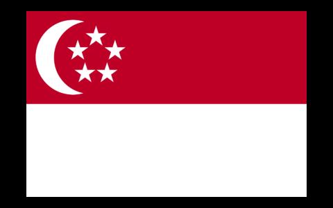 新加坡公司注册